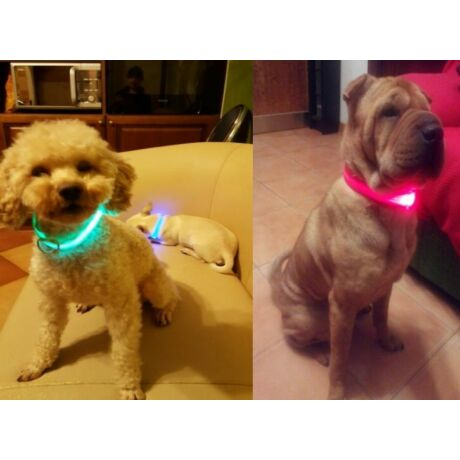 Világító kutya/macska nyakörv